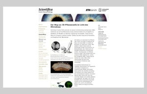 Website Scientifica